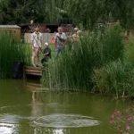 Reepham Cubs Go Fishing