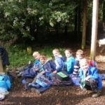 Beaver Trip to Holt Country Park