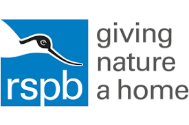 RSPB Big Garden Birdwatch 2020