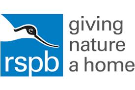 RSPB Big Garden Birdwatch 2020